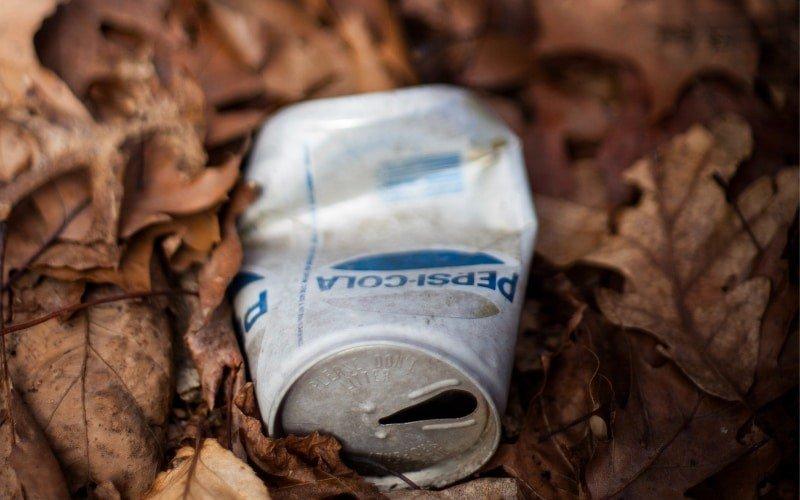 Müll im Wald - Dank Plogging bald nicht mehr