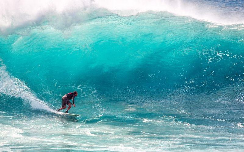 Surfen auf der Wissenswelle